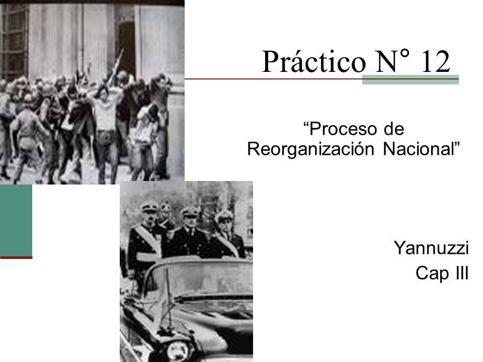 Práctico N° 12 Proceso de Reorganización Nacional Yannuzzi Cap III