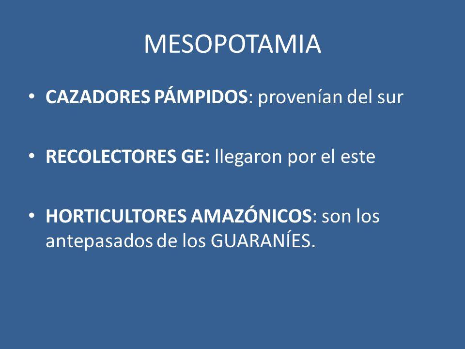 MESOPOTAMIA CAZADORES PÁMPIDOS: provenían del sur RECOLECTORES GE: llegaron por el este HORTICULTORES AMAZÓNICOS: son los antepasados de los GUARANÍES