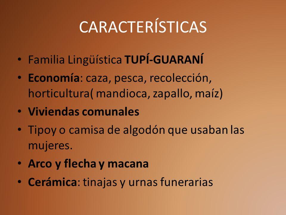 CARACTERÍSTICAS Familia Lingüística TUPÍ-GUARANÍ Economía: caza, pesca, recolección, horticultura( mandioca, zapallo, maíz) Viviendas comunales Tipoy