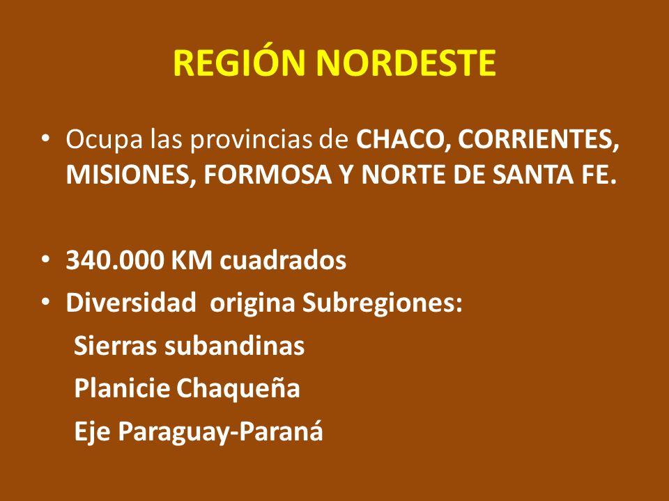 REGIÓN NORDESTE Ocupa las provincias de CHACO, CORRIENTES, MISIONES, FORMOSA Y NORTE DE SANTA FE. 340.000 KM cuadrados Diversidad origina Subregiones: