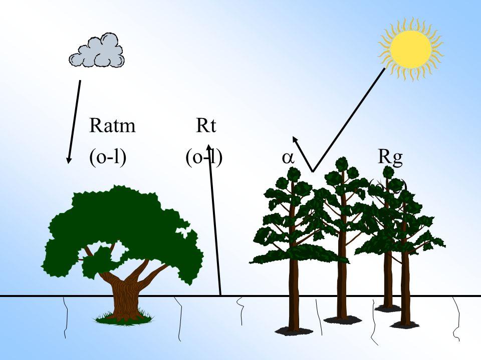 Ratm Rt (o-l)(o-l) Rg (o-c) Q