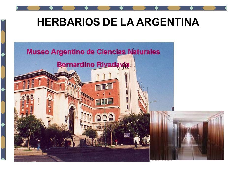 HERBARIOS DE LA ARGENTINA
