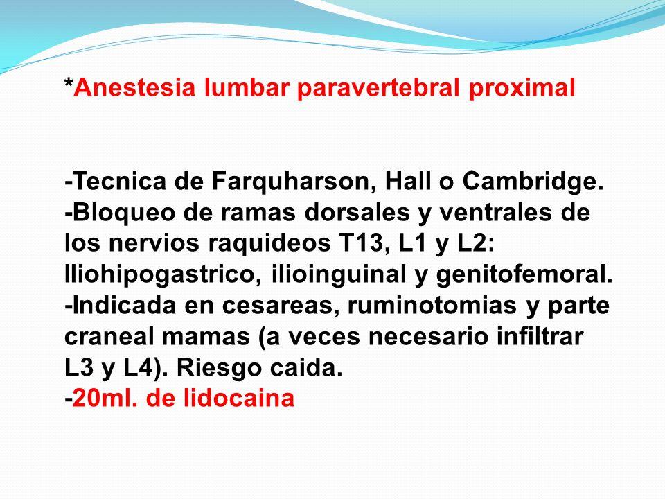 *Anestesia lumbar paravertebral proximal -Tecnica de Farquharson, Hall o Cambridge. -Bloqueo de ramas dorsales y ventrales de los nervios raquideos T1