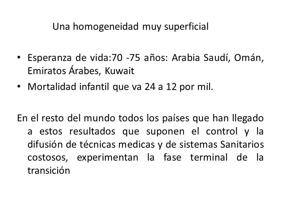 Una homogeneidad muy superficial Esperanza de vida:70 -75 años: Arabia Saudí, Omán, Emiratos Árabes, Kuwait Mortalidad infantil que va 24 a 12 por mil