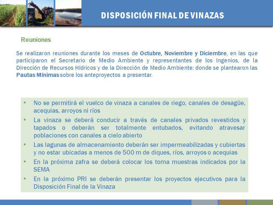 ESQUEMA BASICO – OPCIONES TECNICAS Disposición en Suelo Salino Presentación: Ing.