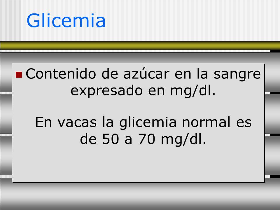 Glicemia Contenido de azúcar en la sangre expresado en mg/dl. En vacas la glicemia normal es de 50 a 70 mg/dl.