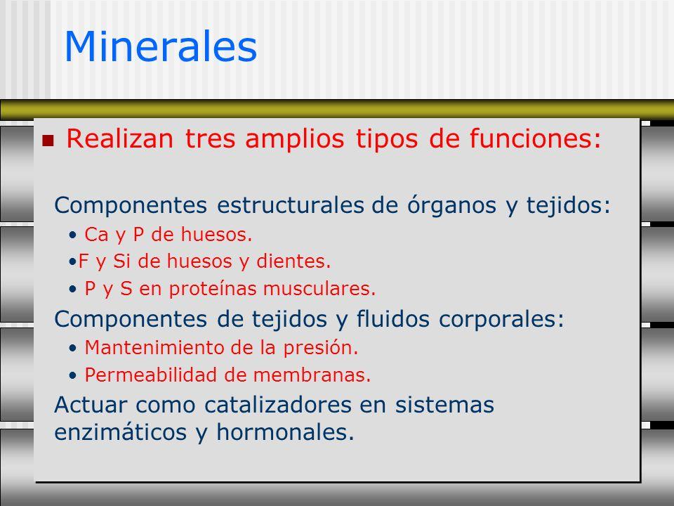 Minerales Realizan tres amplios tipos de funciones: Componentes estructurales de órganos y tejidos: Ca y P de huesos. F y Si de huesos y dientes. P y
