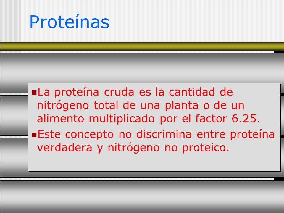 Proteínas La proteína cruda es la cantidad de nitrógeno total de una planta o de un alimento multiplicado por el factor 6.25. Este concepto no discrim