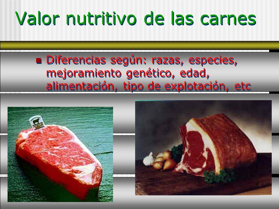 Valor nutritivo de las carnes Diferencias según: razas, especies, mejoramiento genético, edad, alimentación, tipo de explotación, etc