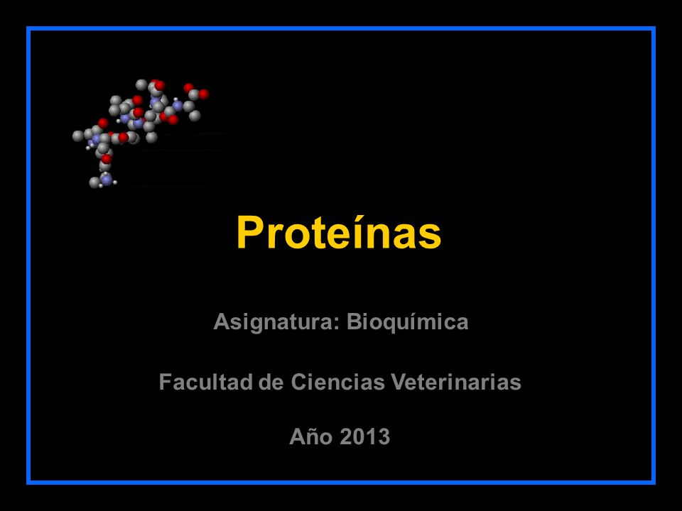 Ácidos Nucleicos Glúcidos Lípidos Proteínas Agua Iones