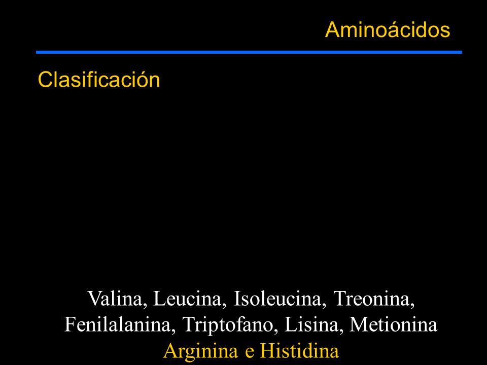 Aminoácidos Clasificación Valina, Leucina, Isoleucina, Treonina, Fenilalanina, Triptofano, Lisina, Metionina Arginina e Histidina