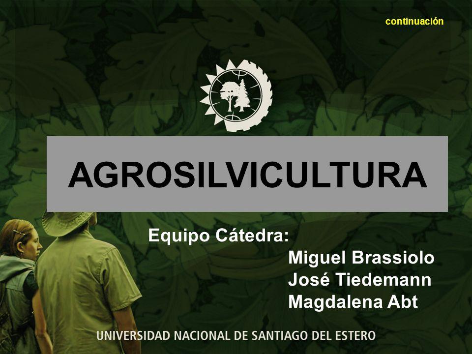 Atributos deseables de los sistemas agroforestales Productividad El sistema produce bienes, mercaderías y servicios requeridos por los productores.