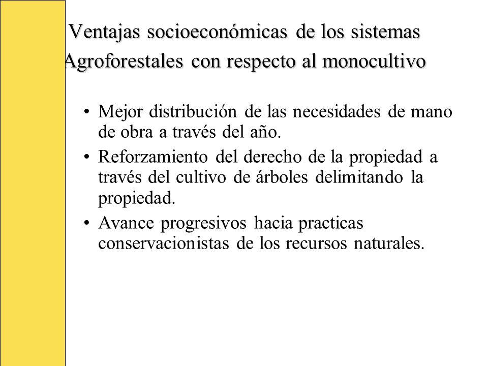 Ventajas socioeconómicas de los sistemas Agroforestales con respecto al monocultivo Mejor distribución de las necesidades de mano de obra a través del