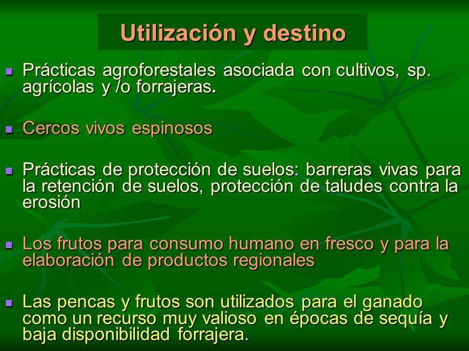 Utilización y destino Prácticas agroforestales asociada con cultivos, sp. agrícolas y /o forrajeras. Prácticas agroforestales asociada con cultivos, s
