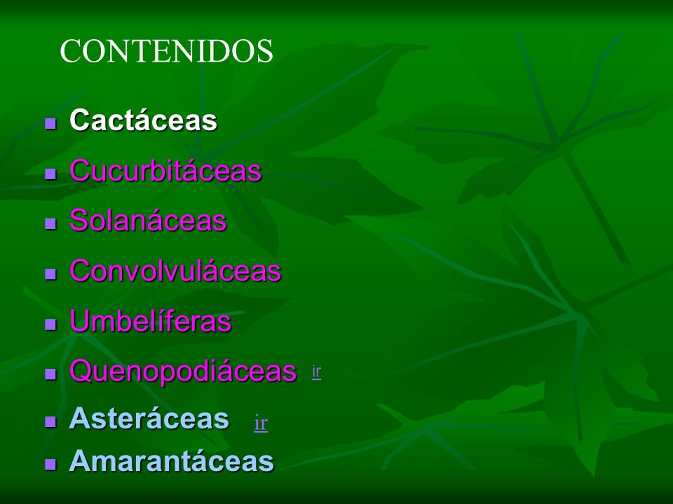 Cactáceas Cactáceas Cucurbitáceas Cucurbitáceas Solanáceas Solanáceas Convolvuláceas Convolvuláceas Umbelíferas Umbelíferas Quenopodiáceas Quenopodiác
