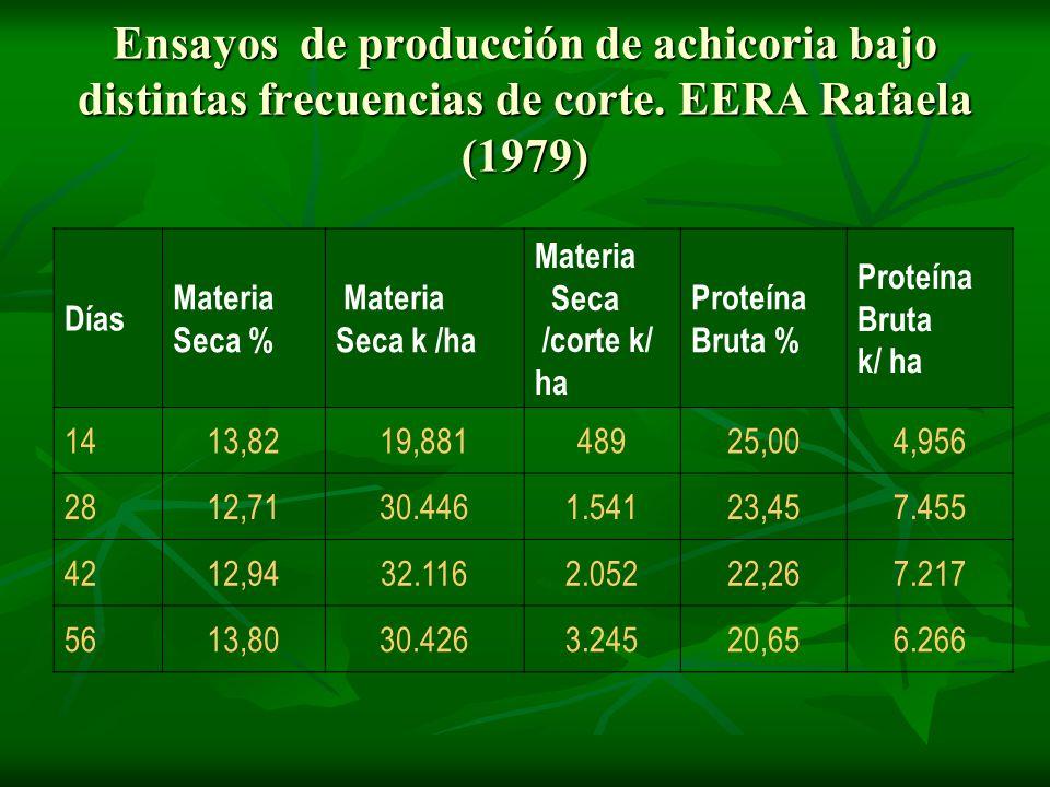 Ensayos de producción de achicoria bajo distintas frecuencias de corte. EERA Rafaela (1979) Días Materia Seca % Materia Seca k /ha Materia Seca /corte