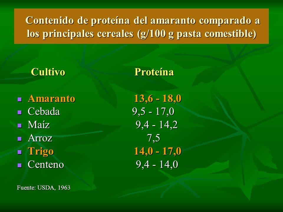 Contenido de proteína del amaranto comparado a los principales cereales (g/100 g pasta comestible) Contenido de proteína del amaranto comparado a los