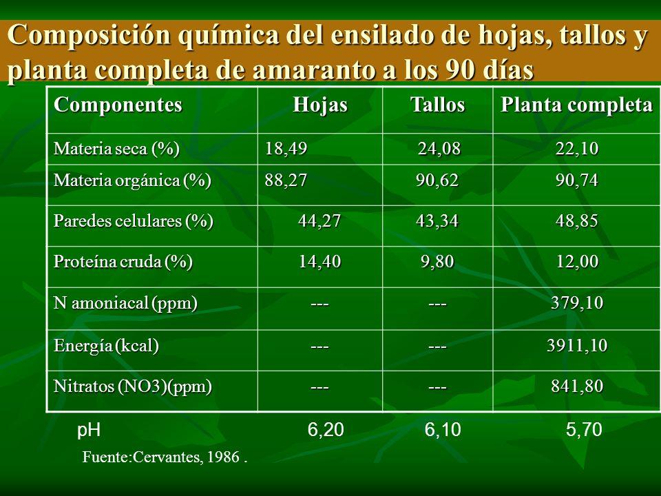 Composición química del ensilado de hojas, tallos y planta completa de amaranto a los 90 días ComponentesHojasTallos Planta completa Materia seca (%)