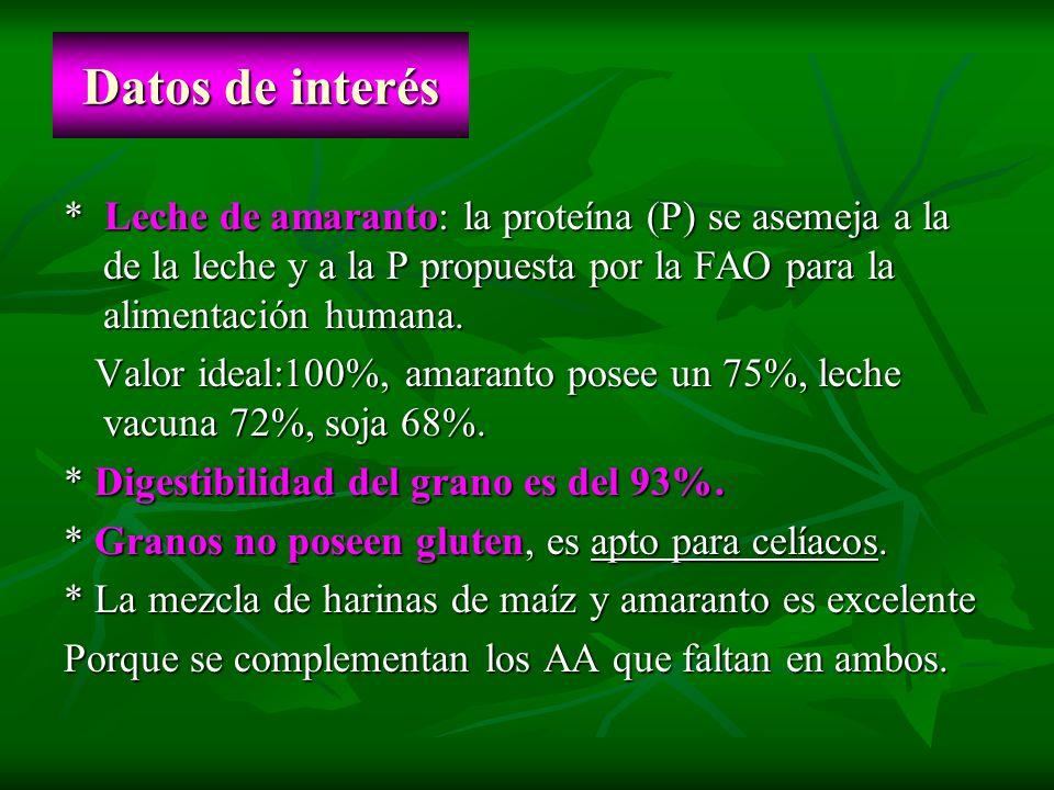 Datos de interés * Leche de amaranto: la proteína (P) se asemeja a la de la leche y a la P propuesta por la FAO para la alimentación humana. Valor ide
