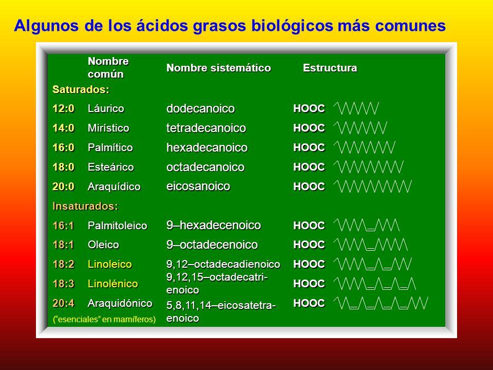 Acidos Grasos Naturales más frecuentes: monocarboxílicos - cadena linealmonocarboxílicos - cadena lineal nº par de C (síntesis: unids. de 2 C); 12 a 2