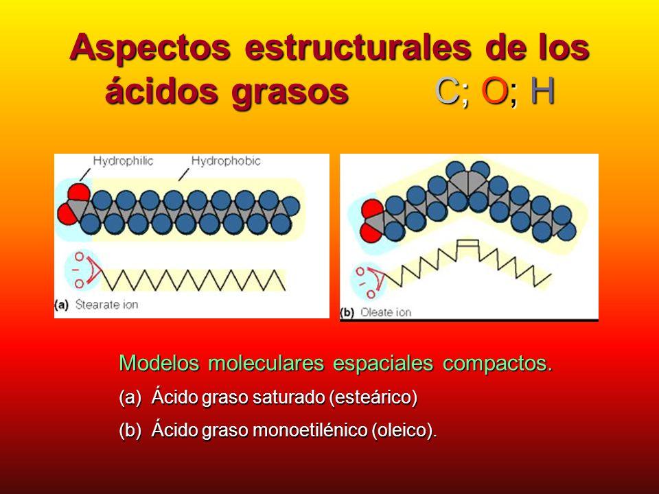Aspectos estructurales de los ácidos grasos ácido linolénico