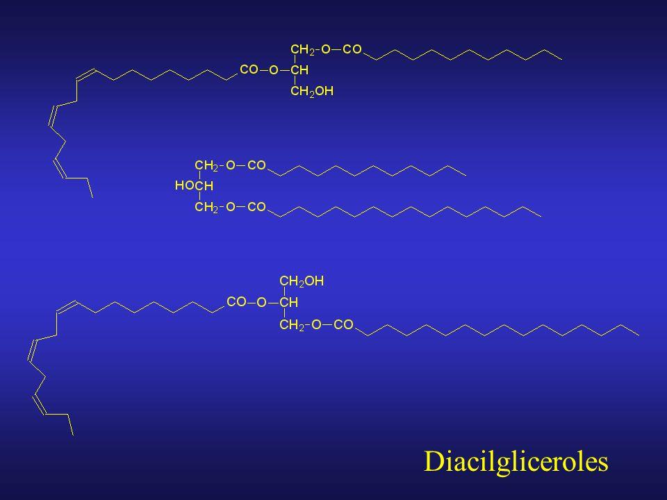 Monoacilgliceroles