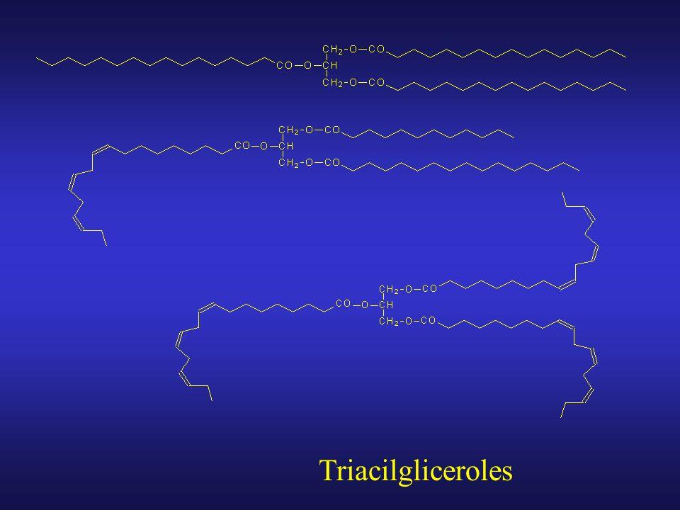 Diacilgliceroles
