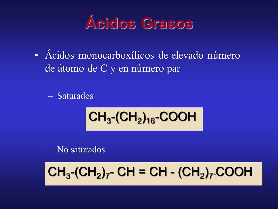 Lípidos - clasificaciones Funciones Biológicas principalmente energética (combustibles metabólicos) y precursores de otros principalmente estructural