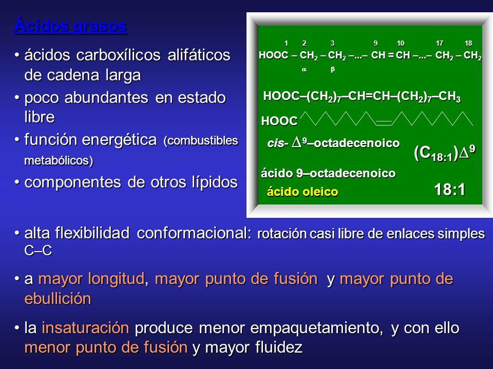 Ácidos Grasos Ácidos monocarboxílicos de elevado número de átomo de C y en número parÁcidos monocarboxílicos de elevado número de átomo de C y en núme