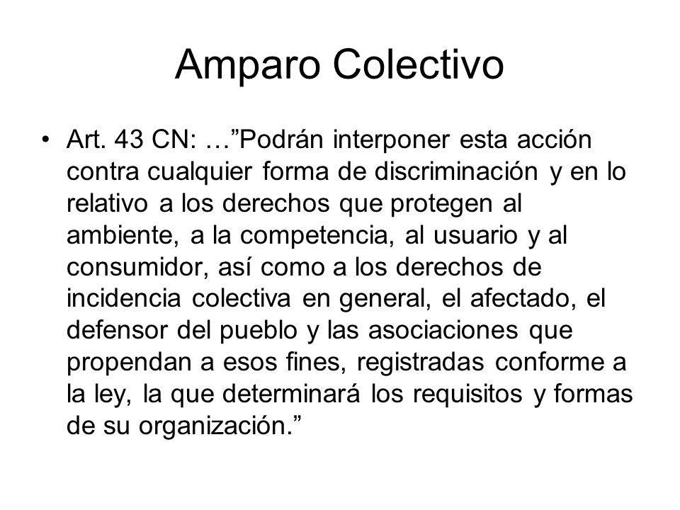 Amparo Colectivo Art. 43 CN: …Podrán interponer esta acción contra cualquier forma de discriminación y en lo relativo a los derechos que protegen al a
