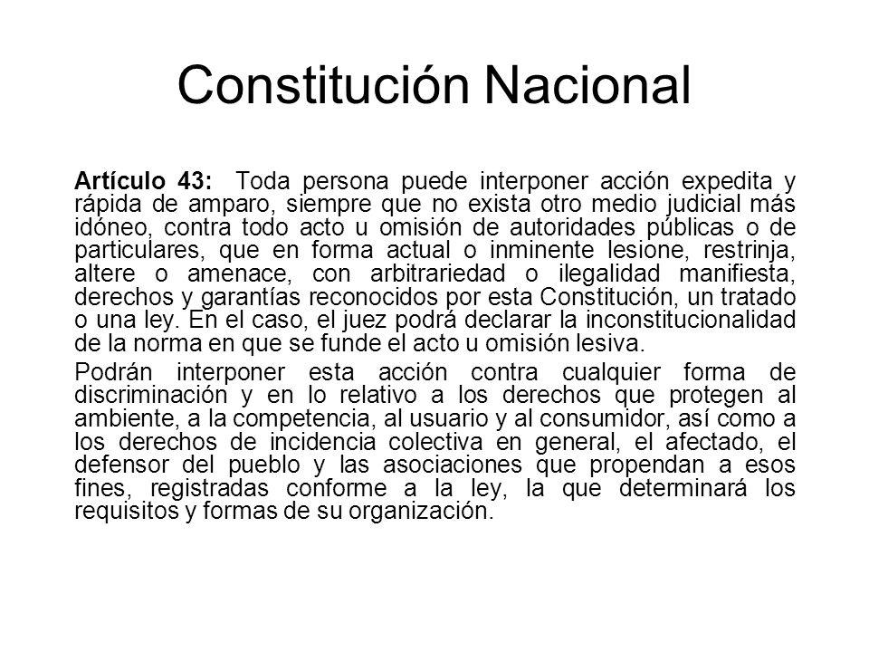 Constitución Nacional Artículo 43: Toda persona puede interponer acción expedita y rápida de amparo, siempre que no exista otro medio judicial más idó