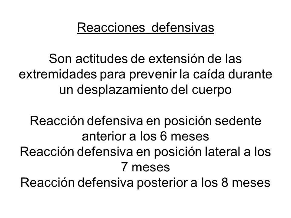 Reacciones defensivas Son actitudes de extensión de las extremidades para prevenir la caída durante un desplazamiento del cuerpo Reacción defensiva en