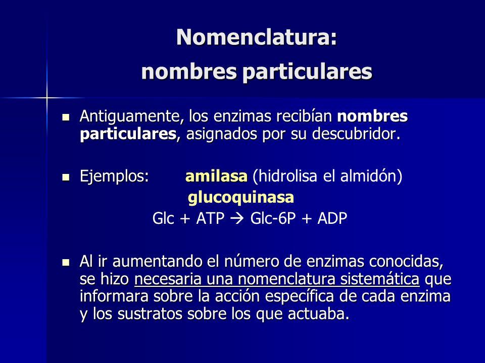 Nomenclatura: nombres particulares Antiguamente, los enzimas recibían nombres particulares, asignados por su descubridor. Antiguamente, los enzimas re