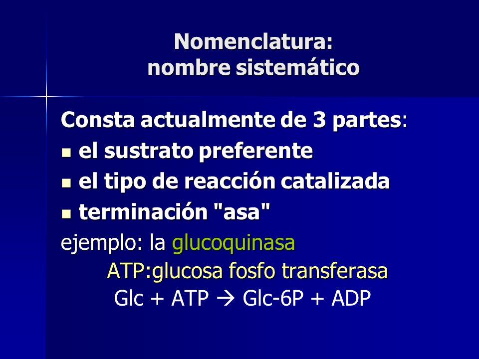 Nomenclatura: nombre sistemático Consta actualmente de 3 partes: el sustrato preferente el sustrato preferente el tipo de reacción catalizada el tipo