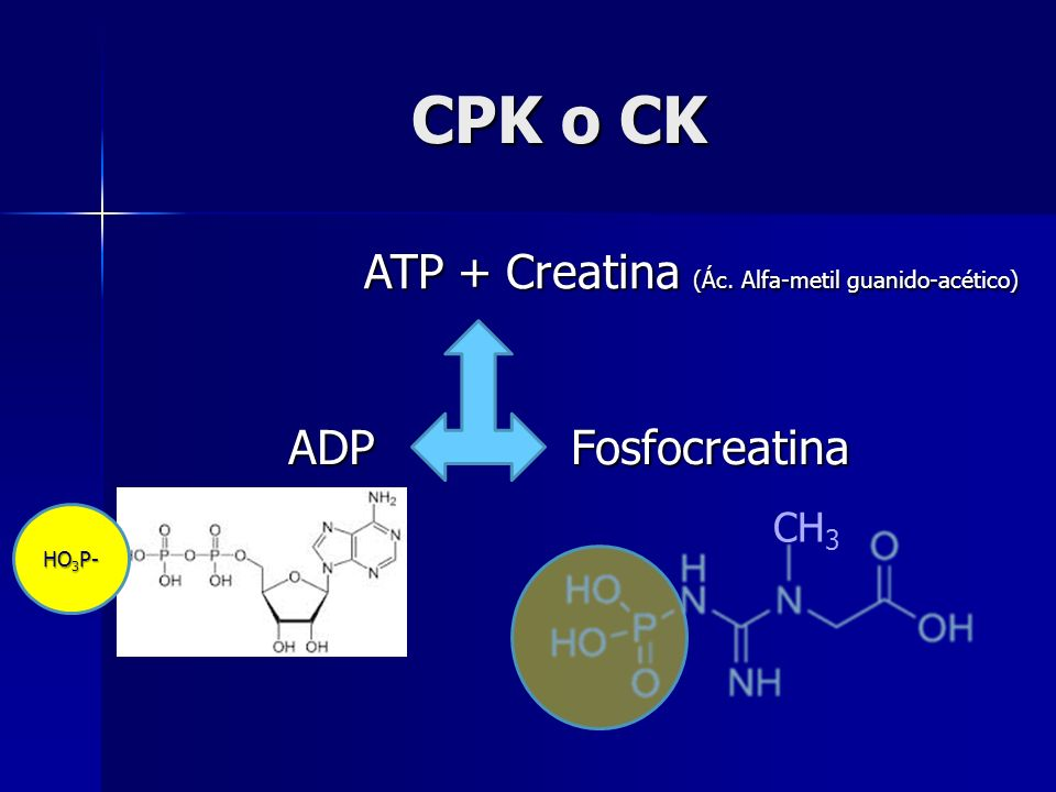 CPK o CK Fosfocreatina ATP + Creatina (Ác. Alfa-metil guanido-acético) ADP HO 3 P- CH 3
