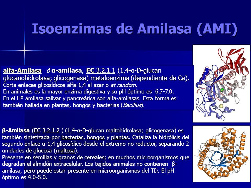 Isoenzimas de Amilasa (AMI) alfa-Amilasaalfa-Amilasa ó α-amilasa, EC 3.2.1.1 (1,4-α-D-glucan glucanohidrolasa; glicogenasa) metaloenzima (dependiente