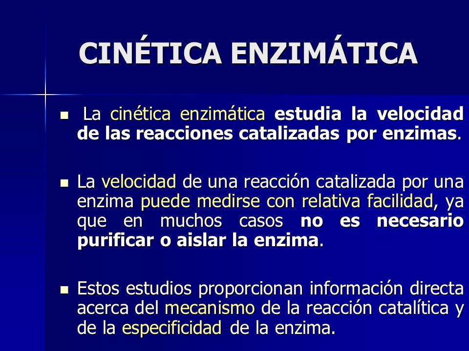 La cinética enzimática estudia la velocidad de las reacciones catalizadas por enzimas. La cinética enzimática estudia la velocidad de las reacciones c
