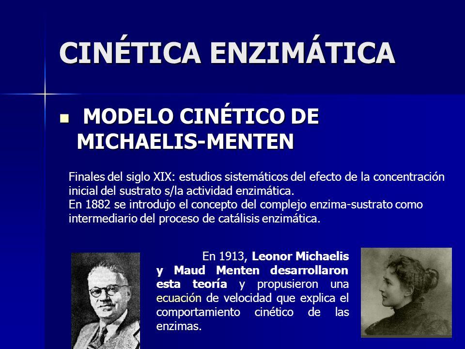 MODELO CINÉTICO DE MICHAELIS-MENTEN MODELO CINÉTICO DE MICHAELIS-MENTEN Finales del siglo XIX: estudios sistemáticos del efecto de la concentración in