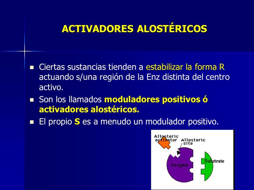 ACTIVADORES ALOSTÉRICOS estabilizar la forma R Ciertas sustancias tienden a estabilizar la forma R actuando s/una región de la Enz distinta del centro