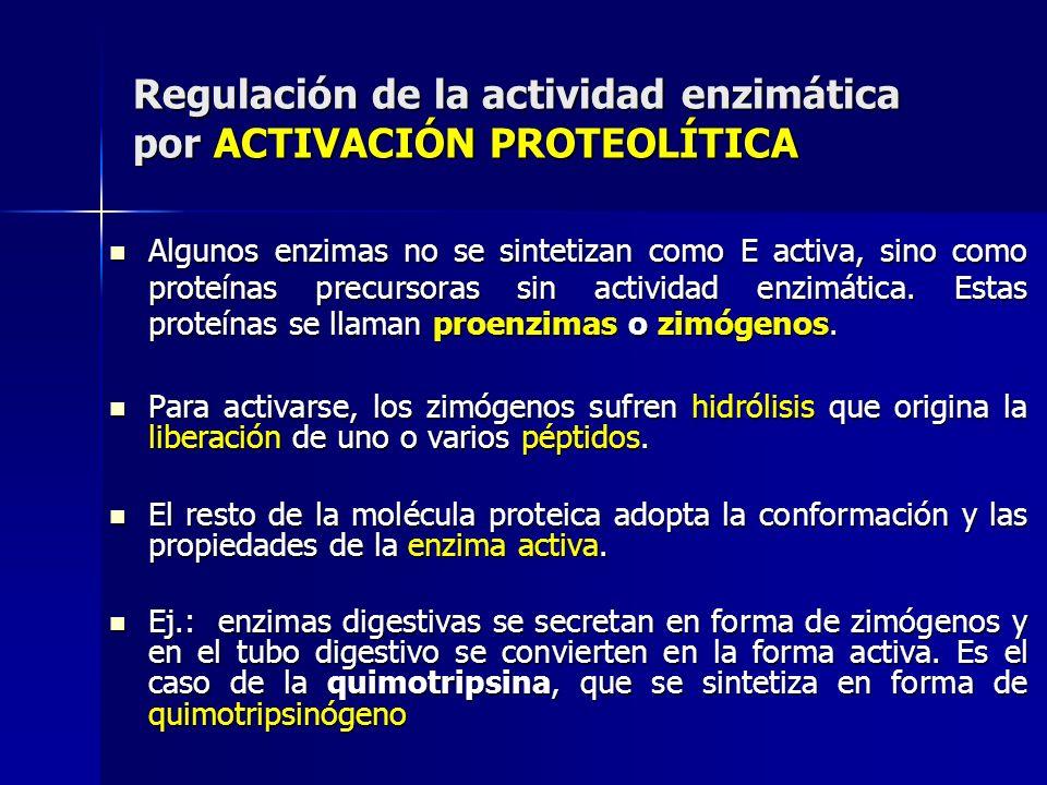 Regulación de la actividad enzimática por ACTIVACIÓN PROTEOLÍTICA Algunos enzimas no se sintetizan como E activa, sino como proteínas precursoras sin