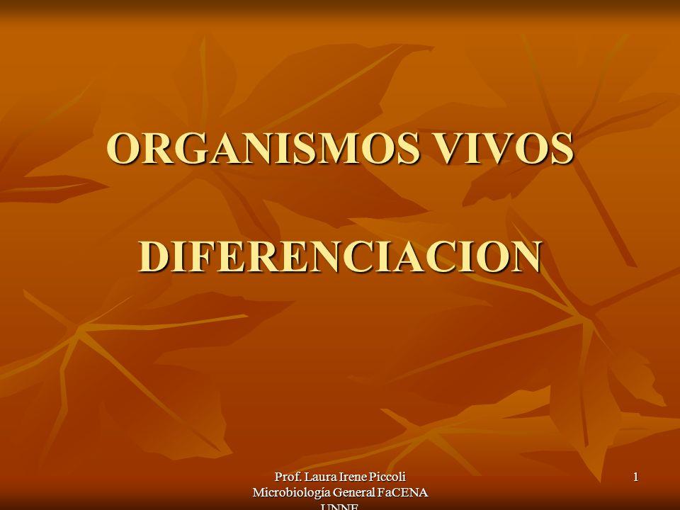 Prof. Laura Irene Piccoli Microbiología General FaCENA UNNE 1 ORGANISMOS VIVOS DIFERENCIACION