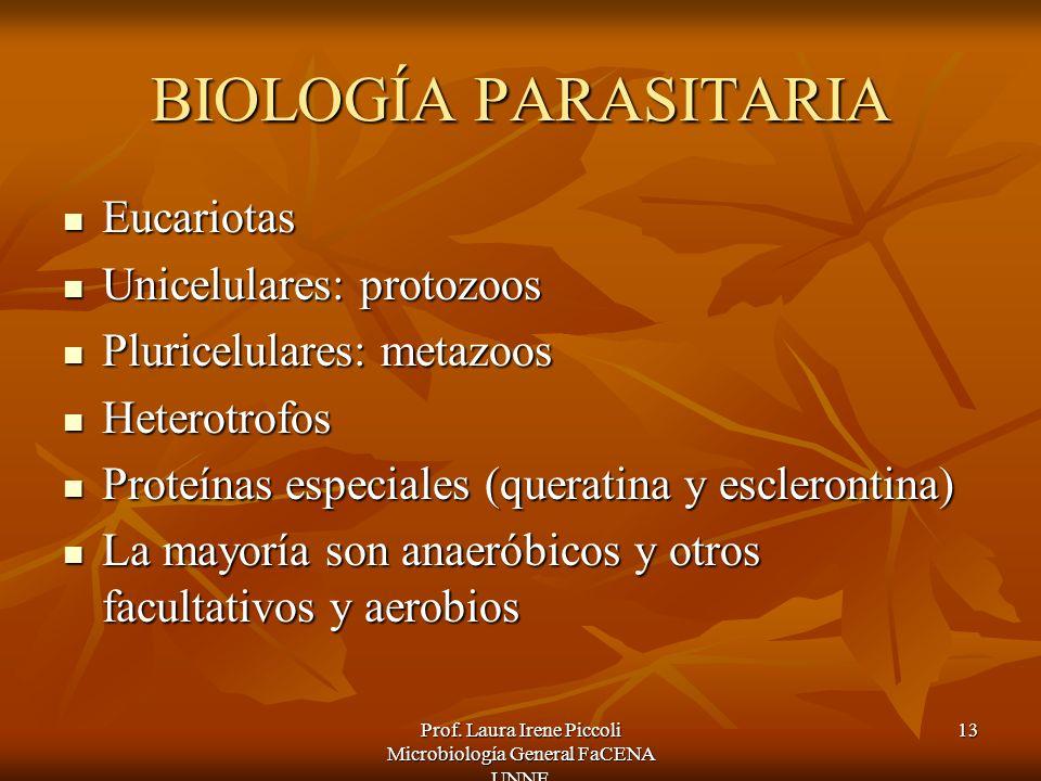 Prof. Laura Irene Piccoli Microbiología General FaCENA UNNE 13 BIOLOGÍA PARASITARIA Eucariotas Eucariotas Unicelulares: protozoos Unicelulares: protoz
