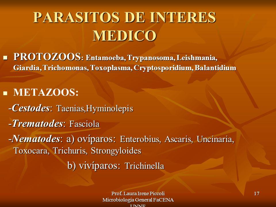 Prof. Laura Irene Piccoli Microbiología General FaCENA UNNE 17 PARASITOS DE INTERES MEDICO PROTOZOOS : Entamoeba, Trypanosoma, Leishmania, Giardia, Tr