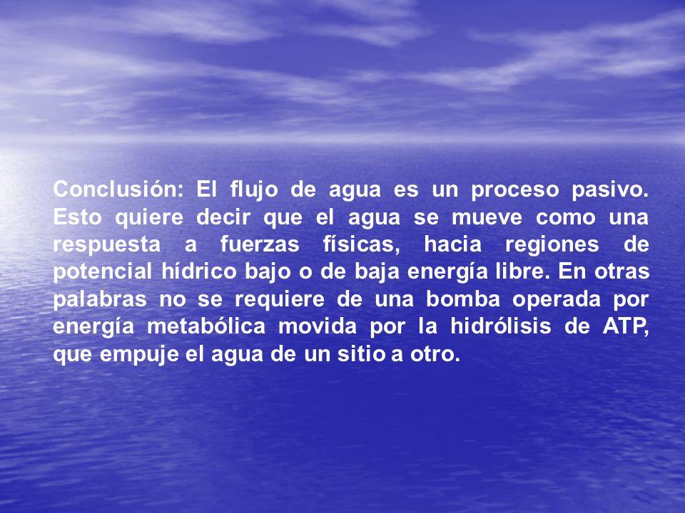 Conclusión: El flujo de agua es un proceso pasivo. Esto quiere decir que el agua se mueve como una respuesta a fuerzas físicas, hacia regiones de pote