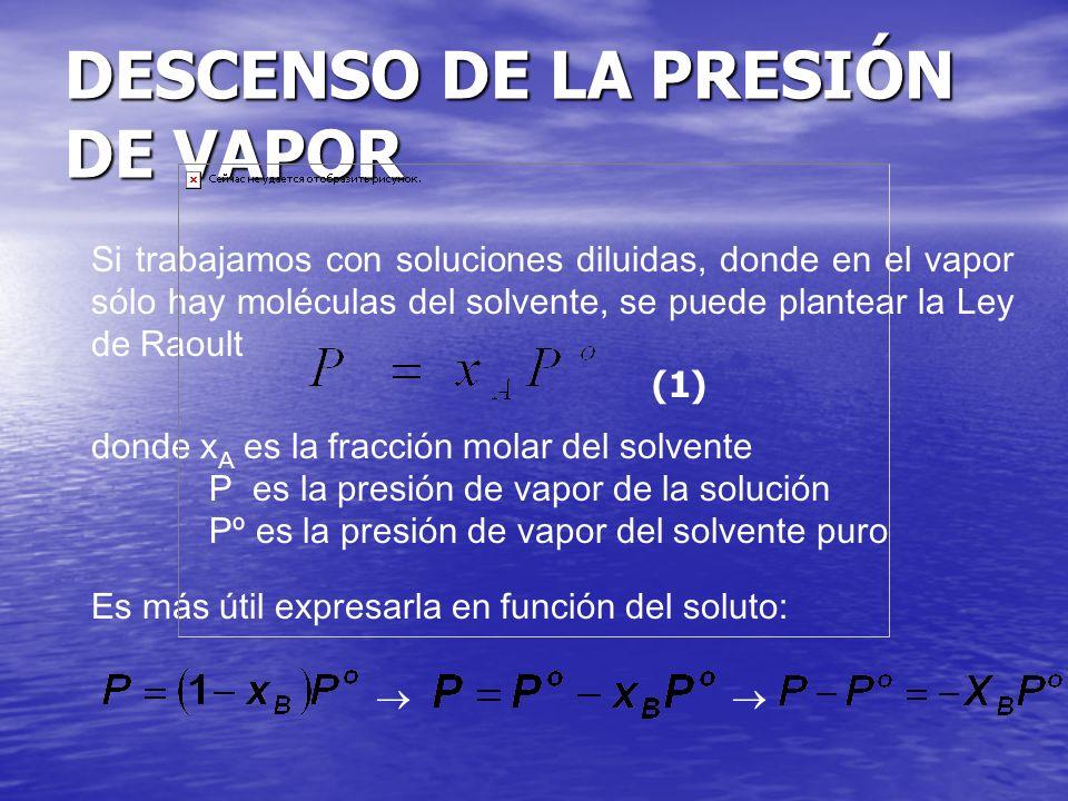 DESCENSO DE LA PRESIÓN DE VAPOR Si trabajamos con soluciones diluidas, donde en el vapor sólo hay moléculas del solvente, se puede plantear la Ley de