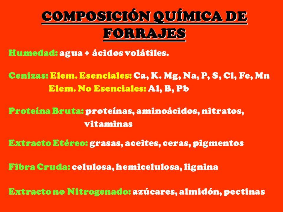 COMPOSICIÓN QUÍMICA DE FORRAJES Humedad: agua + ácidos volátiles. Cenizas: Elem. Esenciales: Ca, K. Mg, Na, P, S, Cl, Fe, Mn Elem. No Esenciales: Al,