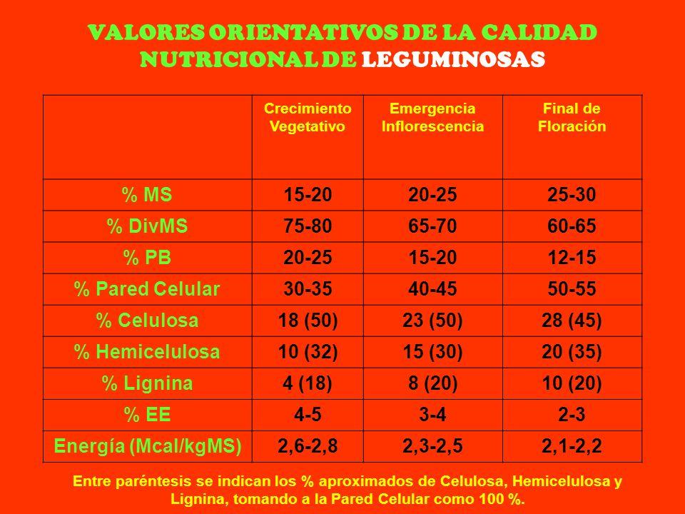 Crecimiento Vegetativo Emergencia Inflorescencia Final de Floración % MS15-2020-2525-30 % DivMS75-8065-7060-65 % PB20-2515-2012-15 % Pared Celular30-3