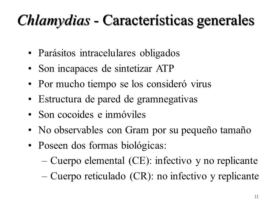11 Parásitos intracelulares obligados Son incapaces de sintetizar ATP Por mucho tiempo se los consideró virus Estructura de pared de gramnegativas Son
