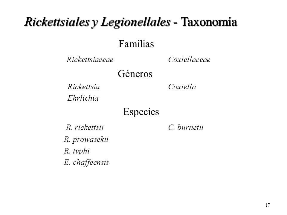 17 Familias RickettsiaceaeCoxiellaceae Géneros RickettsiaCoxiella Ehrlichia Especies R. rickettsii C. burnetii R. prowasekii R. typhi E. chaffeensis R