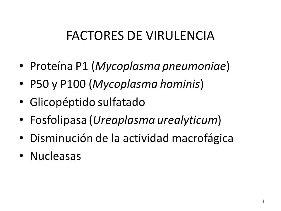 FACTORES DE VIRULENCIA Proteína P1 (Mycoplasma pneumoniae) P50 y P100 (Mycoplasma hominis) Glicopéptido sulfatado Fosfolipasa (Ureaplasma urealyticum)